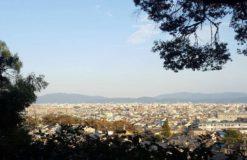 鈴虫寺(阿守)