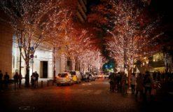 クリスマスまであと一ヶ月!【松沢】