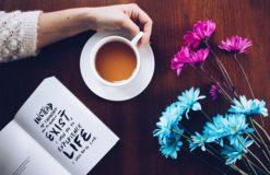 読書の春は、その日の気分でお気に入り本探し♩【大本】