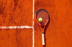 テニス界の新女王♡【大本】