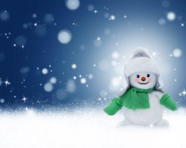 雪だるま画像【井川】