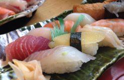 お寿司ランチ(田口)