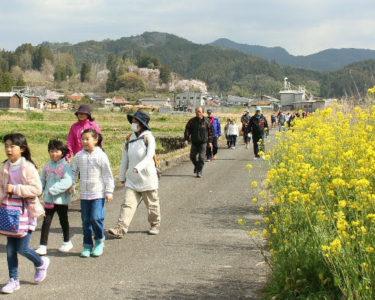 冬から春の悩み事(橋本)