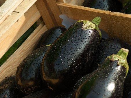 eggplant-1707629__340