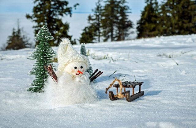 snow-man-2955780_960_720