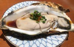 食わず嫌いだった鴨料理にチャレンジ!!【井川】