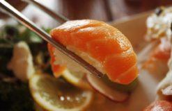 お寿司の食べ放題に行ってきました!【幸田】