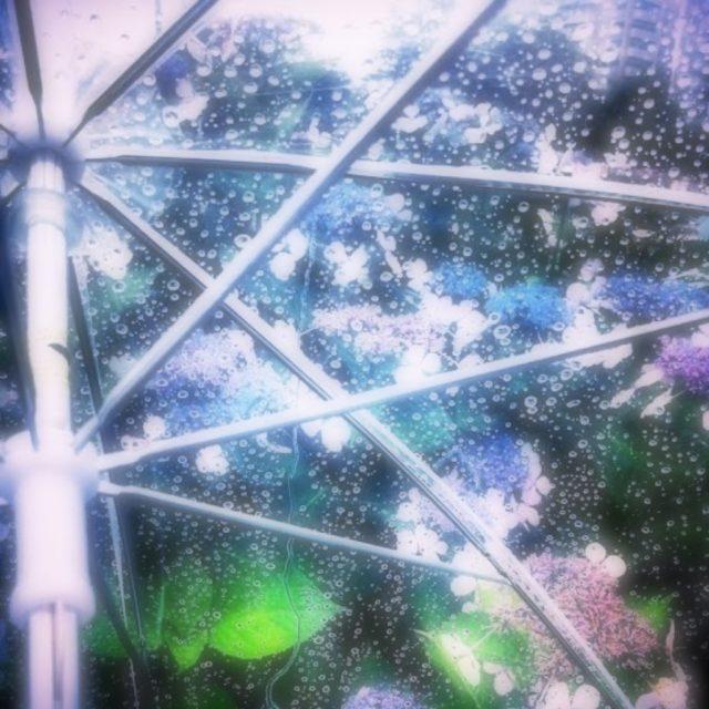 季節の変わり目に〜【南】