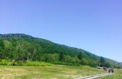 暇な時間の写真整理☆【桧山】