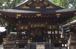 京都へ行ってきました!!【奈良】
