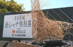 名古屋城のしゃちほこが・・・【千葉】