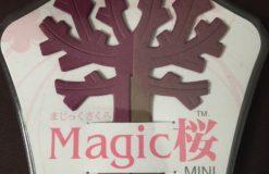 Magic桜ってご存知ですか!?【後藤】