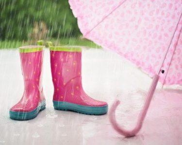 梅雨を快適に過ごす【五十嵐】