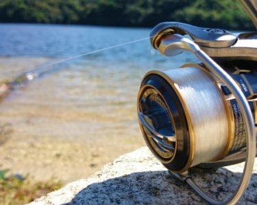 釣ります!