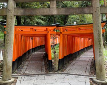 日本の古都・京都に行ってきました【幸田】