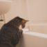 入浴中に毛穴レスのモチモチ美肌をつくる方法♡【桜井】